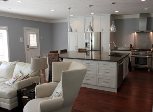 katy-kitchen-living-space