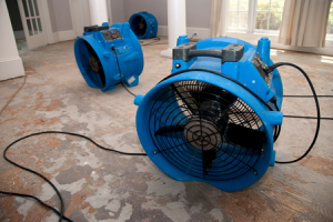 WATER EXTRACTION DRYING DE-HUMIDIFICATION Houston Renovation Contractors